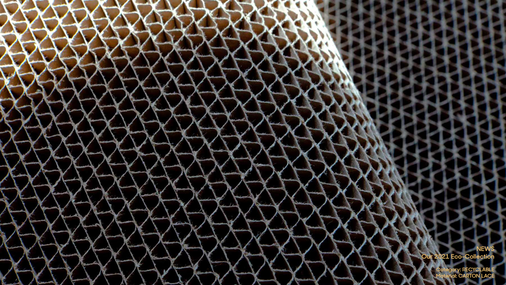 Recyclable_Carton Lace